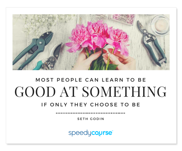 """...most people can learn to be good at something, if only they choose to be..."" ― Seth Godin"